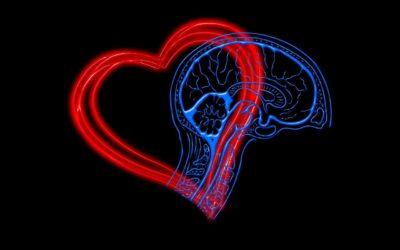 L'intelligence émotionnelle : les défis et atouts des personnes hypersensibles